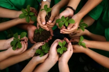 "Five Ways to Develop ""Ecoliteracy"""