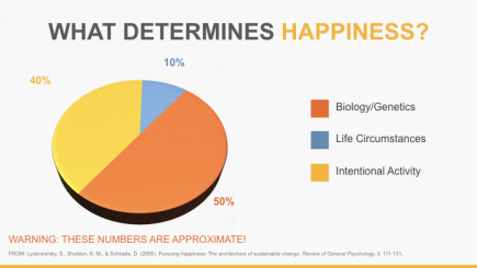 The Happiness Pie Chart