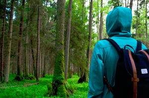 Why You Need More Nature in Your Life
