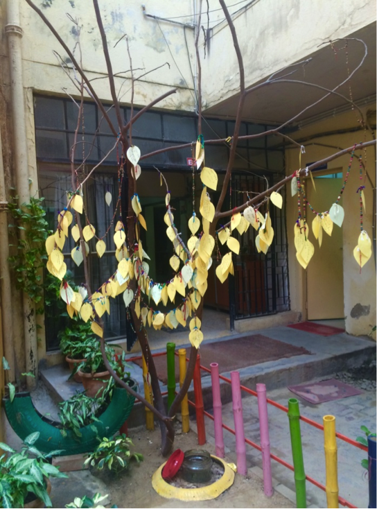 Anam Tree of Forgiveness