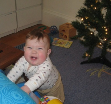 Eating my first fake Christmas tree